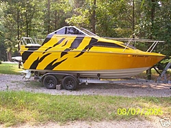 So, if you owned one, would you admit it like this??-sweet-bayliner.jpg