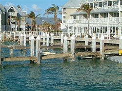Going to Key West today. Need anything checked?-dscf0141.jpg