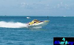 Drive the eZanga.com offshore race boat!-cigwantedshark.jpg
