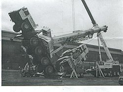 check this out-tiped-cranes.jpg
