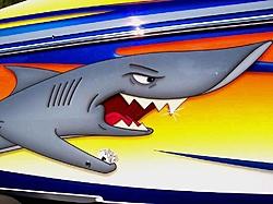 Inside Nortech-sharks.jpg
