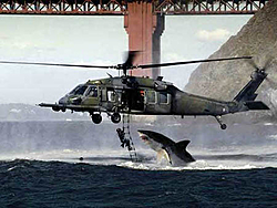 OT    Cool Picture, Jet Fighter-sharkfishingsml.jpg