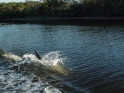 Boating 12/30/05-mvc-682s.jpg
