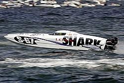 Doug Wright 38 big news TNT custom Marine!-shark.jpg