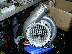 Thinking about a procharger....-dscn0093.jpg
