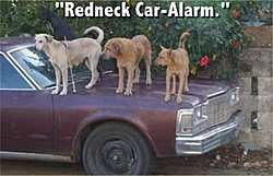Redneck Photos - A good laugh!-redneck-car-alarm.jpg