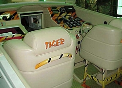 Thoughts on 42 Tiger????-mvc-016s-6.jpg