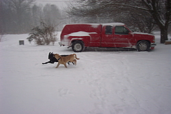 Post Your SNOW Pic's !!!-re-9-.jpg