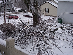 Post Your SNOW Pic's !!!-100_0586-2-.jpg