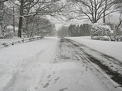 Post Your SNOW Pic's !!!-img_0239-2.jpg