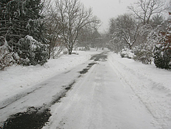 Post Your SNOW Pic's !!!-img_0240-2.jpg