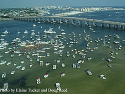 What coast of Florida do you do MOST of your offshore boating on?-destin-crab-2.jpg