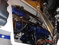 Boat Show Pic's-dsc00005-large-.jpg