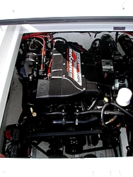 Post Your motor Pics!!!!-engine-stbd.jpg