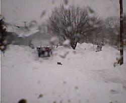 Who got the most snow so far?-021703blizzard3.jpg