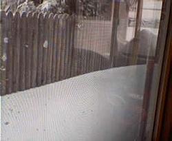 Who got the most snow so far?-021703blizzard6.jpg