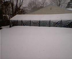 Who got the most snow so far?-021703blizzard9b.jpg