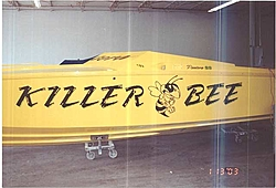 Pantera Survivor-killer-bee-1.jpg