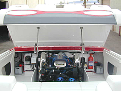 anyone have pics of there engine compartment..-dscn0034.jpg