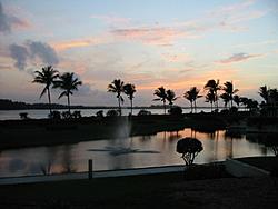 Florida pics. from 2/26-103-0305_img.jpg