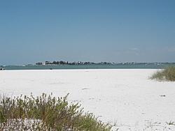 Clearwater Beach Info Needed!!!!-shell1.jpg