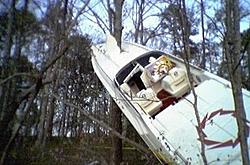 oso tree hugger-fountain-1.jpg