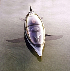 Bionic Dolphin-dolphinpicture-1.jpg