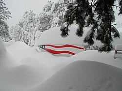 Colorado Blizzard-evergreen-storm-002.jpg