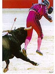 where in the world is sean stinson-bullfighter.jpg