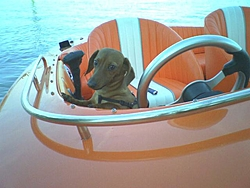 Venetian Marina (Sandusky)-imagejpeg_0.jpg