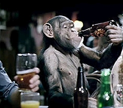 JC PERF or Monkey?????-jjji.jpg