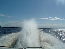 Would you put Arneson Surface Drives on a new boat?-rooster.jpg