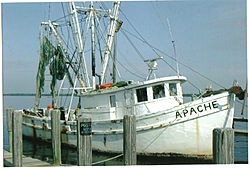 Apache spotted in S.W. Florida-apache.jpg