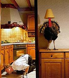 Happy Thanksgiving to all!-hiding-turkey.jpg