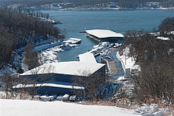 Loto snow damage.-portarrowhead.jpg