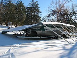 Loto snow damage.-img_1216.jpg