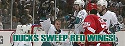 Detroit Red Wings Beat Ducks 6-1, Sweep Series-homepage_duckssweepredwings.jpg