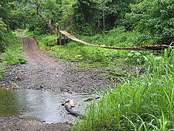 Costa Rica   Where to go what to see???-tn_road_1.jpg