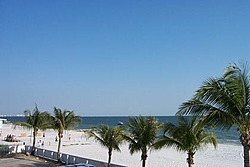 Florida Vacation/Ft. Myers and Nor-tech-dcp_0851.jpg