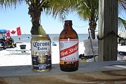 How bad I hate Winter!-florida-st.paddys-day-oso.jpg