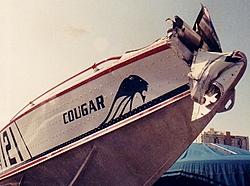 Cougar Boats-toleman-bow.jpg