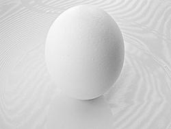 Sarasota Suncoast - Season Opener Pics-egg-m.jpg