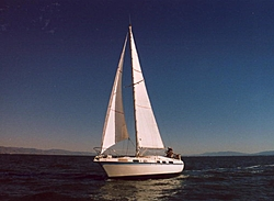 To Boat or not to Boat that is the ?-sailboat.jpg