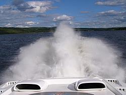 Lake Champlain 2007-rooster-glh.jpg