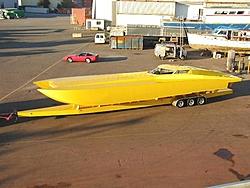 Update on this big azz yellow cat!?-50cat8jpeg.jpg