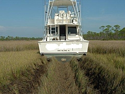 46' Ocean Yacht high and dry 'beached' in Forked River, NJ - pics-pic16827.jpg