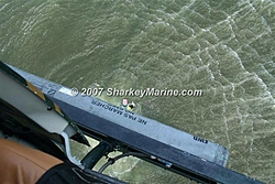The ULTIMATE WAY to attend a RAFT UP! Jumping out of a helicopter!-glenn5.jpg