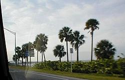 My trip to FL-st-pete-1.jpg