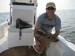 Not something you see boating-deer3.jpg