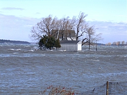 Post your Noreaster Pics!!!-wind-feb-17-2006-030.jpg